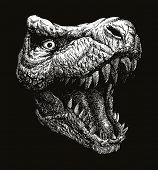 picture of dinosaur  - Trex Dinosaur Vector hand drawn background - JPG
