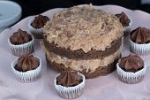 picture of lice  - German Chocolate Cake and mini cupcakes on a white plate - JPG