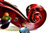 picture of violin  - Intensely modernized image of a violin scroll on a white background - JPG