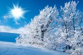 stock photo of winter scene  - Winter in the mountains - JPG