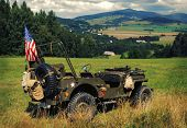 pic of willy  - Old american fighting jeep Willys in terrain of czech mountains - JPG