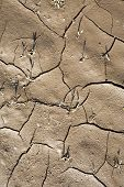 picture of loam  - pattern of cracked dry earth of loam - JPG