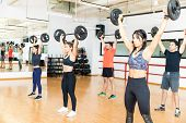 Group Of Determined Men And Women Lifting Barbells Together In Gym poster