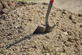 Close Up Of A Shovel Stuck Into A Dirt Pile poster