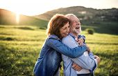 Side View Of Senior Couple Hugging Outside In Spring Nature At Sunset. poster