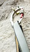 picture of beartooth  - Climbing carabiner on rock wall - JPG