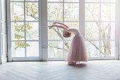 Young Classical Ballet Dancer Girl In Dance Class. Beautiful Graceful Ballerine Practice Ballet Posi poster