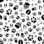 Animal Track Seamless Pattern Background Of Wild Mammal And Bird Footprint. Bear, Dog And Wolf, Tige poster