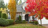 stock photo of house woods  - Shot of urban modern home during fall season - JPG