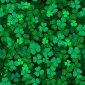 image of clover  - Seamless clover leaves background - JPG