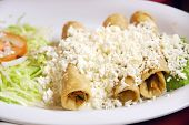 stock photo of enchiladas  - Mexican enchiladas with cheese - JPG
