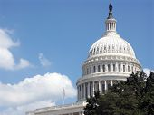 image of capitol building  - capitol building in washington - JPG