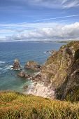 stock photo of devonshire  - Cliffs near the Devonshire village of Hope Cove - JPG