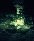 stock photo of rainy weather  - Green foggy twilight forest mystical landscape background - JPG