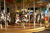 picture of carousel horse  - Entertainment concept - JPG