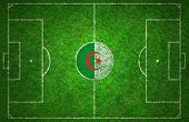 picture of algeria  - Football pitch painted with the Algeria flag - JPG