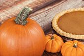 picture of pumpkin pie  - Closeup of pie pumpkin - JPG