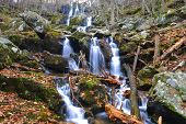 picture of hollow  - Shenandoah National Park - JPG