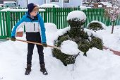 foto of snow shovel  - a teenager shoveling the new snow from a path - JPG
