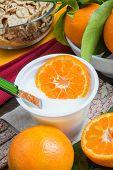 pic of clementine-orange  - low - JPG
