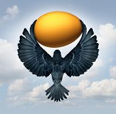 image of transfer  - Wealth management and transfer of funds as a financial and business investment concept as a flying bird carrying a gold egg as an investor symbol for managing savings - JPG
