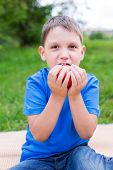 pic of nibbling  - Boy holding red apple by two hands and nibbling - JPG