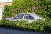 stock photo of weed  - The abandoned and immobile car standing in the weeds beside the road - JPG