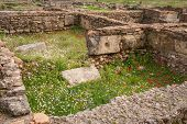 pic of greek  - Ancient Greek ruins at the archaeological place of Ancient Olimpia Peloponnese Greece - JPG