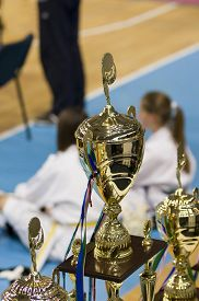 stock photo of taekwondo  - Golden championship cups arranged on table and two taekwondo fighters in background