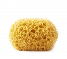 pic of bathing  - Yellow bathing sponge isolated over the white background - JPG