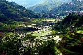picture of ifugao  - The Banaue Rice Terraces are located in the Philippines - JPG