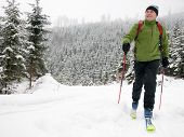 stock photo of nordic skiing  - Ski touring - JPG