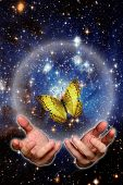 open hands with butterfly against space, renewal concept