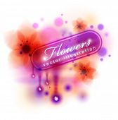picture of belladonna  - banner - JPG