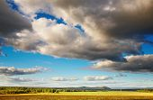 image of hayfield  - Landscape with cloudy sky - JPG