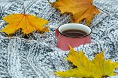 Cup Of Hot Tea Dressed In Knitted Warm Winter Scarf Or Warm Knitted Sweater, And Yellow Leaves. Wint poster