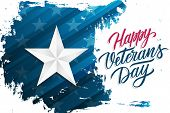 Usa Happy Veterans Day Celebrate Banner With Silver Star On Brush Stroke Background And Hand Letteri poster