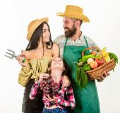 Family Farmers Gardeners Basket Harvest Isolated White Background. Harvest Festival Concept. Parents poster