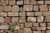 stock photo of wall-stone  - Stone wall texture of Mayan ruins in mexico - JPG