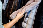 The Girl Touches The Fur On The Fur Coat. Choosing A Fur Coat In The Store. poster