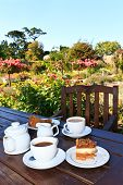 pic of english cottage garden  - English Five o�Clock Tea in the garden  ** Note: Slight graininess, best at smaller sizes  - JPG