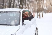 Portrait Of Car  Driver With Smile Santa Hat And Thumb Up Through Car Window. On The Road Winter Vac poster