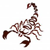 Scorpio Painted With Brown Winding Lines, Awesome poster