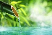 foto of dripping  - Traditional Bamboo Fountain - JPG