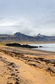 Sand Beach With Black Voulcanic Rocks In Iceland Near Budir - Small Town On Snaefellsnes Peninsula poster