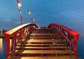 foto of python  - Python Bridge in Amsterdam - JPG