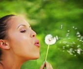pic of hay fever  - a woman blowing on a dandelion - JPG
