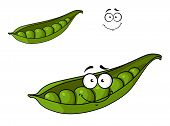 picture of green pea  - Fresh green cartoon peas vegetable in a pod with a happy smiling face for healthy food design - JPG