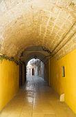 Alleyway in Mola di Bari Oldtown. Apulia. poster