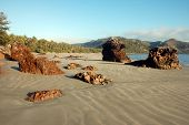 Beach At Cape Hillsborough